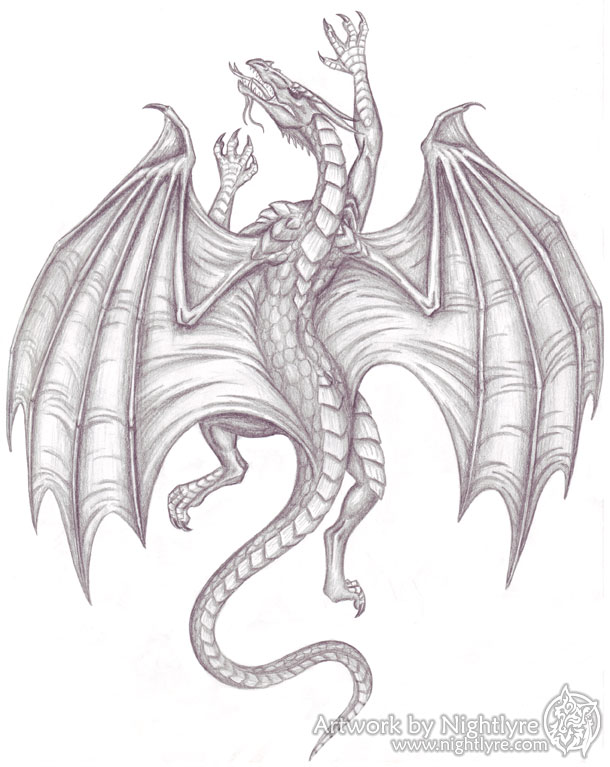 A graphite drawing of a climbing dragon