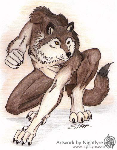 how to draw an anthro wolf
